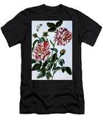 The Variegated Rose Of England Men's T-Shirt (Athletic Fit)