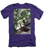Tree Growing Through Wall Men's T-Shirt (Athletic Fit)