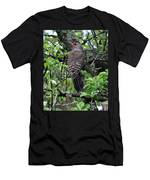 Woodpecker In The Apple Tree Men's T-Shirt (Athletic Fit)