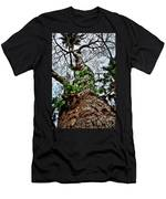 Ye Ole Tree At Chichen Itza Men's T-Shirt (Athletic Fit)