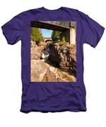 Temperance Bridges Men's T-Shirt (Athletic Fit)