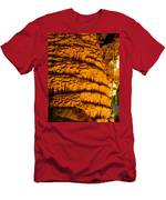 Temple Of The Sun Detail Men's T-Shirt (Athletic Fit)
