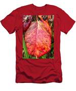 Blackberry Leaf In The Fall 3 Men's T-Shirt (Athletic Fit)