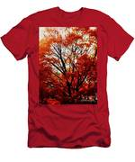 Fall Colors Cape May Nj Men's T-Shirt (Athletic Fit)