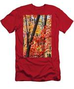 Fall In The Forest Men's T-Shirt (Athletic Fit)