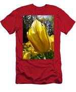 Keukenhof Yellow Tulips Men's T-Shirt (Athletic Fit)