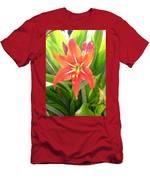 Orange Amaryllis Flower Blooms In Springtime Men's T-Shirt (Athletic Fit)