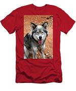 Siberian Husky With Blue And Brown Eyes Men's T-Shirt (Athletic Fit)