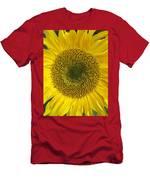 Sunflower's Cluster Men's T-Shirt (Athletic Fit)