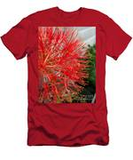 African Blood Lily Or Fireball Lily Men's T-Shirt (Athletic Fit)