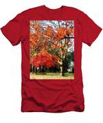 Autumn Sycamore Tree Men's T-Shirt (Athletic Fit)