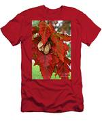 Maple Leaves And Seeds Men's T-Shirt (Athletic Fit)