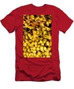 Yellow Kelp Pods Men's T-Shirt (Athletic Fit)
