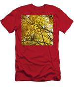 Colorado Aspens In Fall Men's T-Shirt (Athletic Fit)