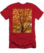 Fall In Kayloya Park 2 Men's T-Shirt (Athletic Fit)