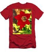 Tulip Star Men's T-Shirt (Athletic Fit)