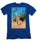 Find The Giraffe Men's T-Shirt (Athletic Fit)