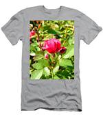 Pink Rose Buds Men's T-Shirt (Athletic Fit)