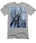 Trees From Below Men's T-Shirt (Athletic Fit)