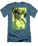 Grapes And Leaves Men's T-Shirt (Athletic Fit)