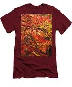 Colors Blowing In The Wind Men's T-Shirt (Athletic Fit)