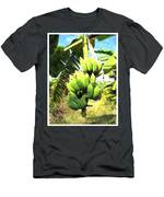A Banana Field In Late Afternoon Sunlight With Sky And Clouds Men's T-Shirt (Athletic Fit)