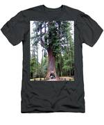 California Redwoods 6 Men's T-Shirt (Athletic Fit)