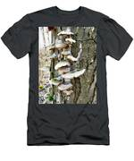 Fairy Staircase Men's T-Shirt (Athletic Fit)