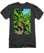 Inglenook Vineyard -10 Men's T-Shirt (Athletic Fit)