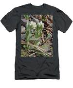 Plantain-leaved Pussytoes Wildflowers - Antennaria Plantaginifolia Men's T-Shirt (Athletic Fit)