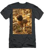 Ruffed Grouse Display Men's T-Shirt (Athletic Fit)