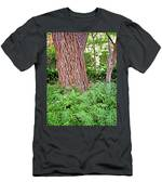 Slippery Elm And Ferns Men's T-Shirt (Athletic Fit)