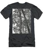 Springtime Woods - New Jesey Pine Barrens - Black And White Men's T-Shirt (Athletic Fit)