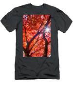 Star Light Thru Maple Men's T-Shirt (Athletic Fit)