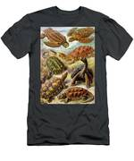 Turtles Turtles And More Turtles Men's T-Shirt (Athletic Fit)