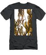 Autumn Sunburst Men's T-Shirt (Athletic Fit)