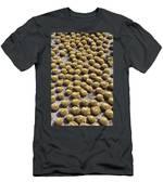 Golden Barrel Cactus 1 Men's T-Shirt (Athletic Fit)