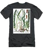Elymus Repens, Commonly Known As Couch Grass Men's T-Shirt (Athletic Fit)
