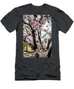 Saucer Magnolias In Central Park Men's T-Shirt (Athletic Fit)