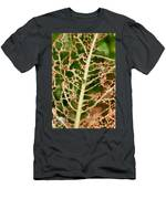 Leaf Eaten By Insects Men's T-Shirt (Athletic Fit)
