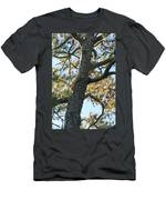 Bald Head Tree Men's T-Shirt (Athletic Fit)