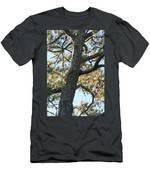 Bald Head Tree Men's T-Shirt (Athletic Fit)