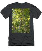 Birds Inside The Coba Ruins Men's T-Shirt (Athletic Fit)