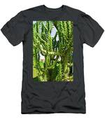 Cactus At Pilgrim Place In Claremont-california  Men's T-Shirt (Athletic Fit)