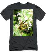 Catnip And The Bee Men's T-Shirt (Athletic Fit)