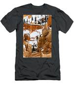 Down Into The Canyon Men's T-Shirt (Athletic Fit)