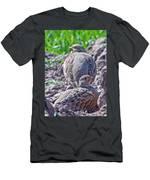 Grey Partridge Men's T-Shirt (Athletic Fit)