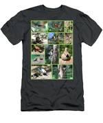 Nature Collage Men's T-Shirt (Athletic Fit)