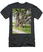 Old Weathered Tree Men's T-Shirt (Athletic Fit)