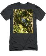 Stellar Jay 2 Men's T-Shirt (Athletic Fit)